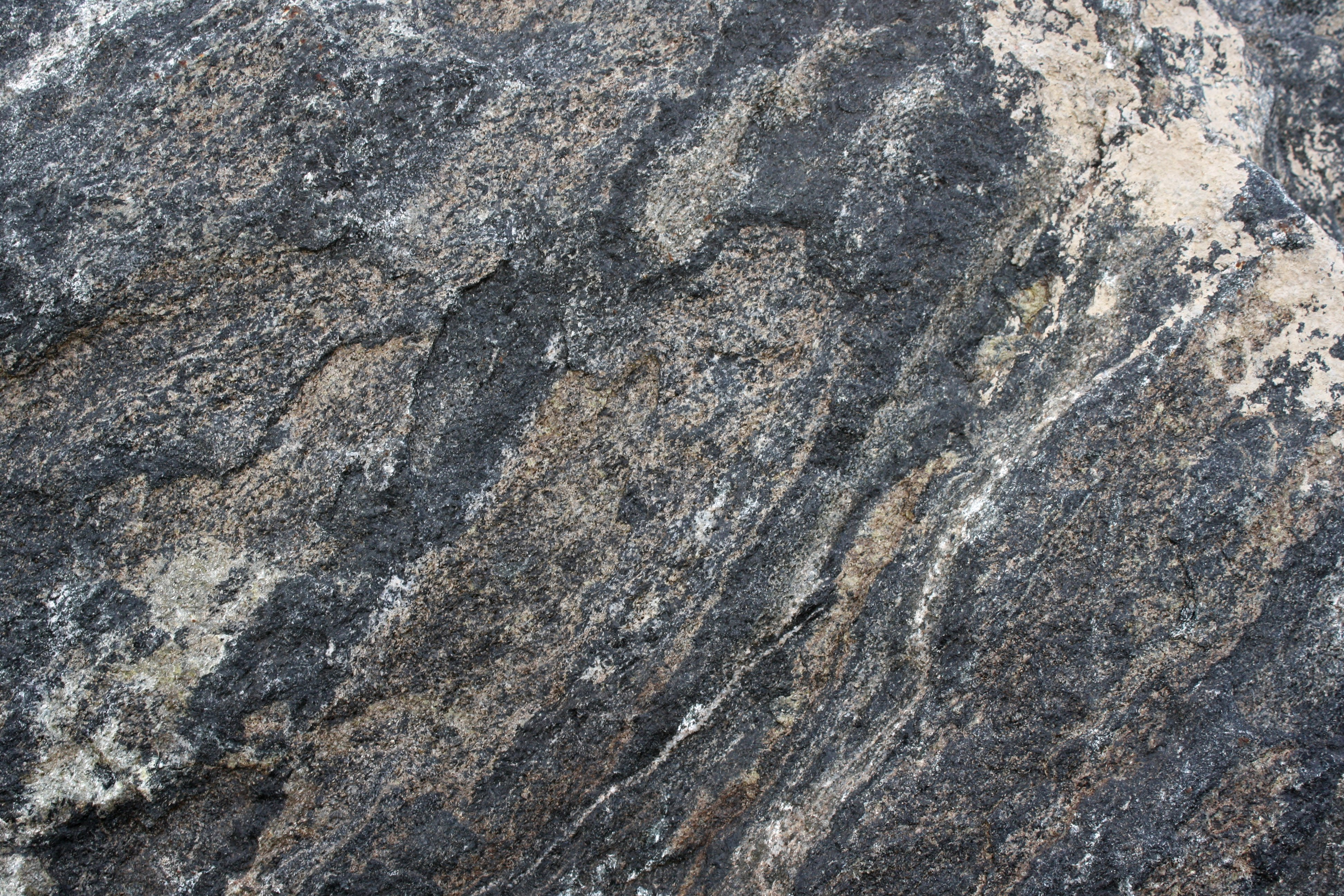 Black Schist Rock Texture With Diagonal Bands Picture