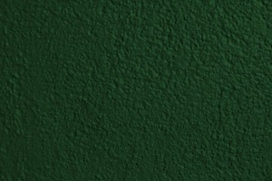 Forest Green Painted Wall Texture - Free High Resolution Photo