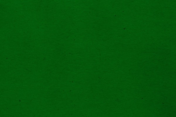 Kelly Green Paper Texture with Flecks - Free High Resolution Photo