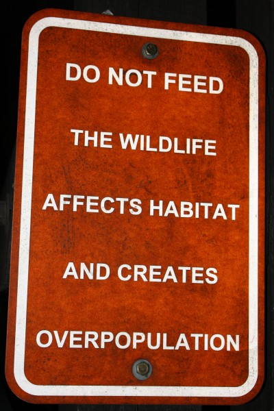 Do Not Feed the Wildlife Sign - Free High Resolution Photo