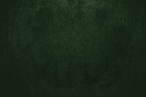 Forest Green Leather Close Up Texture - Free High Resolution Photo