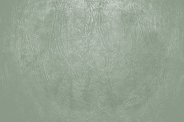 Sage Green Leather Close Up Texture - Free High Resolution Photo