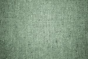 Sage Green Upholstery Fabric Close Up Texture - Free High Resolution Photo