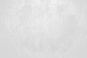 White Leather Close Up Texture - Free High Resolution Photo