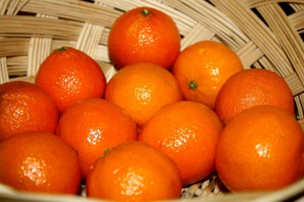 Tangerines - Free high resolution photo