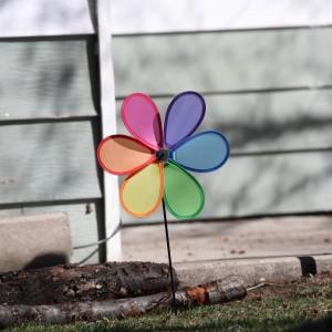Colorful Pinwheel Yard Decoration - Free High Resolution Photo