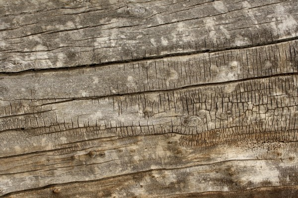 Old Weathered Wood Texture - Free High Resolution Photo