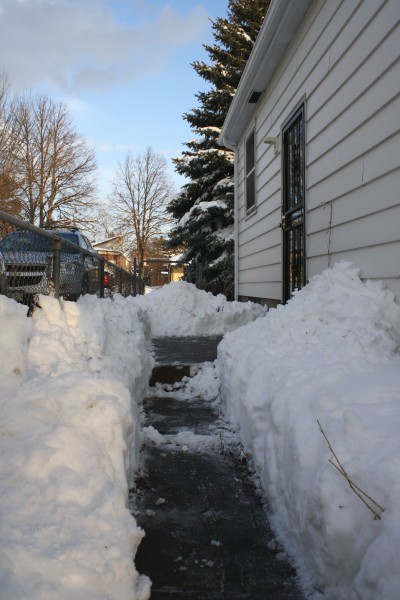 Sidewalk Shoveled through Deep Snow - Free High Resolution Photo