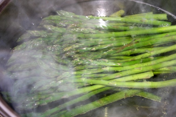 Steamed Asparagus - Free High Resolution Photo