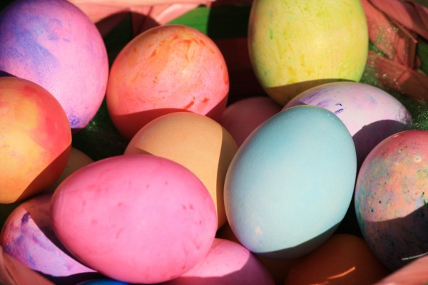Easter Eggs Close Up - Free High Resolution Photo