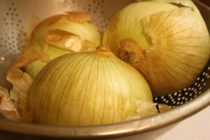 Onions - Free High Resolution Photo