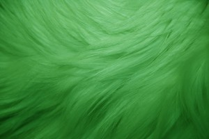 Green Fur Texture - Free High Resolution Photo