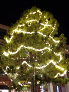 Outdoor Christmas Tree with Lighted Garlands - Free High Resolution Photo