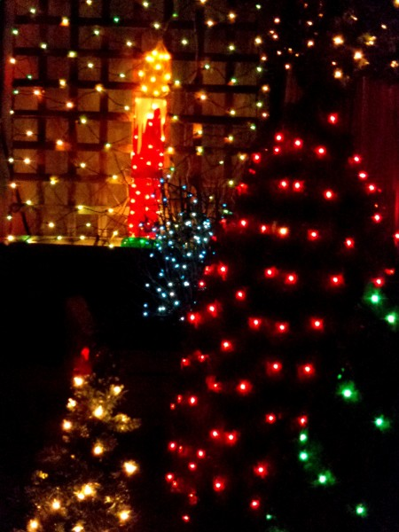 Christmas Lights Candle and Trees - Free High Resolution Photo