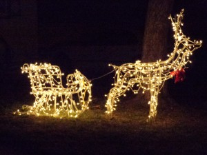 Christmas Reindeer Pulling Sleigh - Lighted Holiday Decoration - Free High Resolution Photo