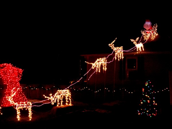 Reindeer Pulling Santa's Sleigh Holiday Christmas Lights - Free High Resolution Photo