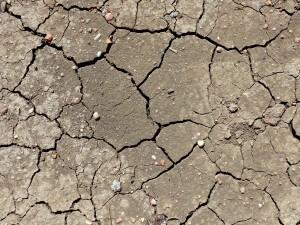 Dried Mud Cracks Texture - Free High Resolution Photo