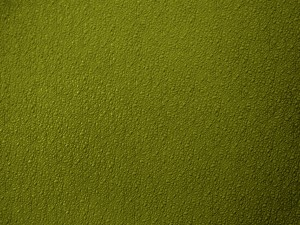 Bumpy Pea Green Plastic Texture - Free High Resolution Photo