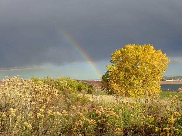 Autumn Rainbow - Free High Resolution Photo