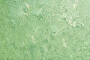 Frost on Glass Close Up Texture Colorized Light Green - Free High Resolution Photo