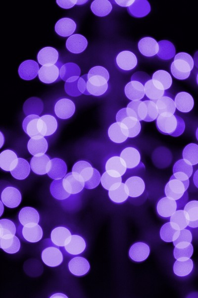 Purple Christmas Lights - Free High Resolution Photo