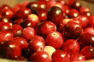 Freshly Washed Whole Cranberries - Free High Resolution Photo