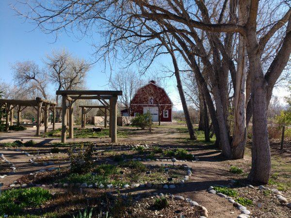 Spring Garden with Barn - Free High Resolution Photo