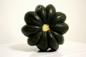 Acorn Squash Top - Free High Resolution Photo