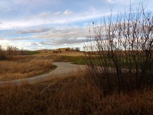 Dry Fall Grass with Path through Rolling Hills - Free High Resolution Photo