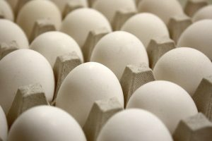 Tray of Eggs Close Up - Free High Resolution Photo