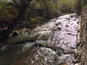 Mountain Stream - Free High Resolution Photo