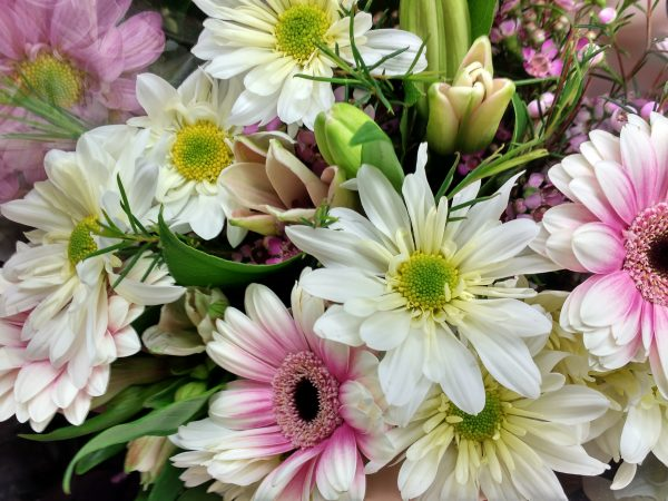 Spring Flowers Bouquet Close up - Free High Resolution Photo