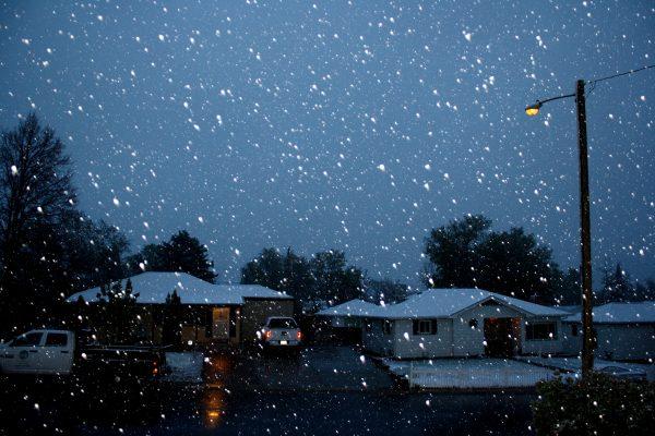 Falling Snow on Neighborhood Street at Night - Free High Resolution Photo