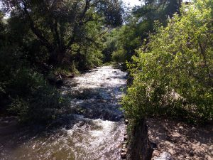 Flowing Stream - Free High Resolution Photo
