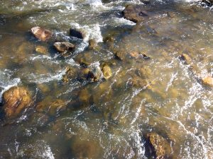 Stream Water with Rocks - Free High Resolution Photo