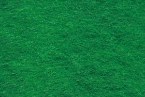 Green Scouring Pad Close Up Texture - Free High Resolution Photo
