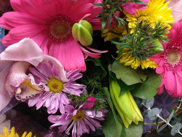 Colorful Flower Bouquet Close Up - Free High Resolution Photo