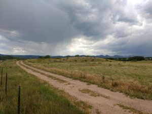 Dirt Road through Field - Free High Resolution Photo