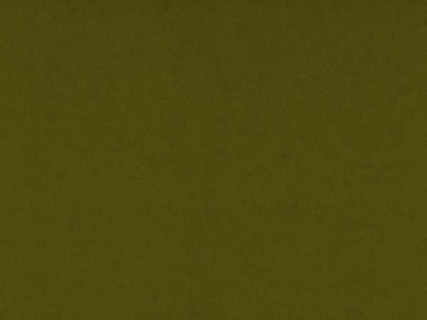 Olive Green Card Stock Paper Texture - Free High Resolution Photo