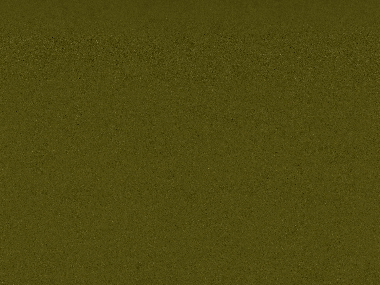 Olive Green | Brooklyn Blonde | Bloglovin