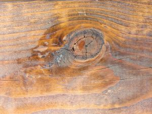 Knot in Wood Grain Texture - Free High Resolution Photo