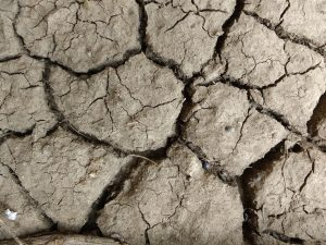 Mud Cracks Texture - Free High Resolution Photo