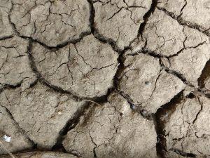 Mud Cracks Texture - Free High Resolution Photo