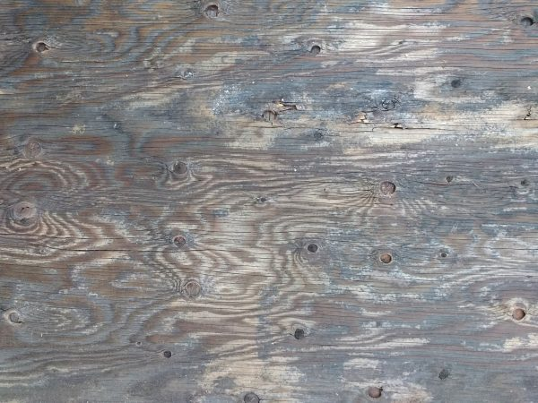 Old Plywood with Knots Texture - Free High Resolution Photo