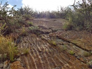 Sandstone with Ripple Marks - Free High Resolution Photo