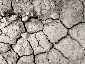 Dry Mud Close Up - Free High Resolution Photo