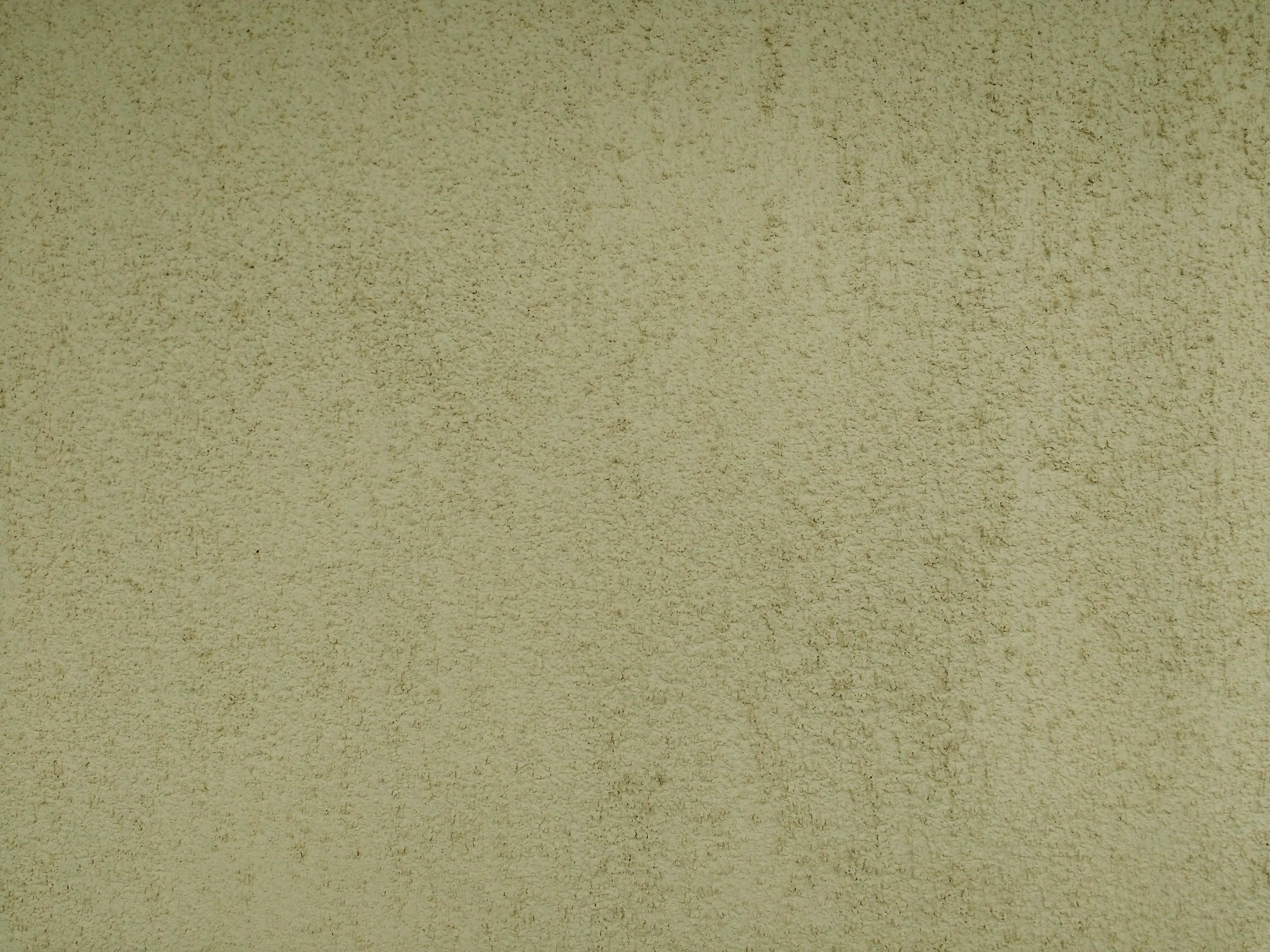 Olive Green Background Free Stock Photo - Public Domain