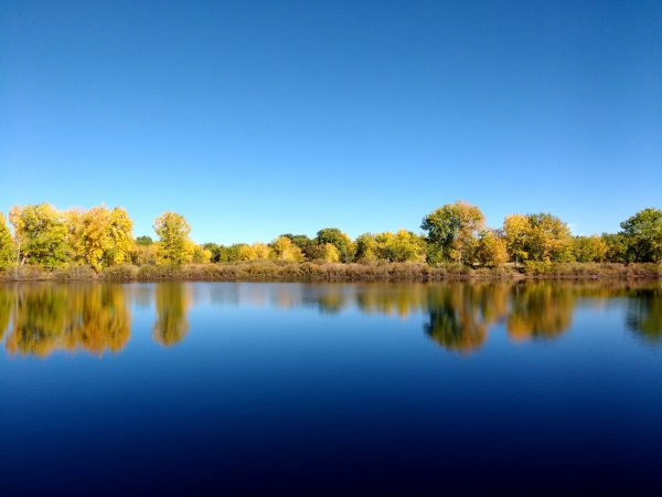 Trees Reflected in Blue Lake - Free High Resolution Photo