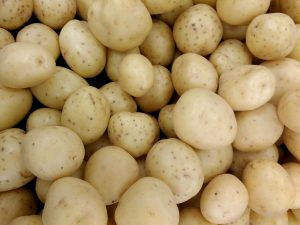 Yukon Gold Potatoes - Free High Resolution Photo